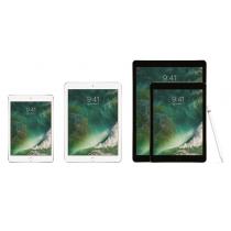 iPad-Family