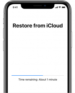 Restore from iCloud Backup 2