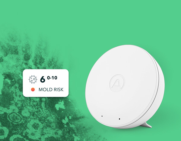 Airthings-Wave-Mini-with-Mold-Risk-Newsletter-Header-EN